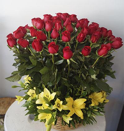 rosas rojas cancun