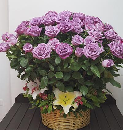 flores lilas cancun